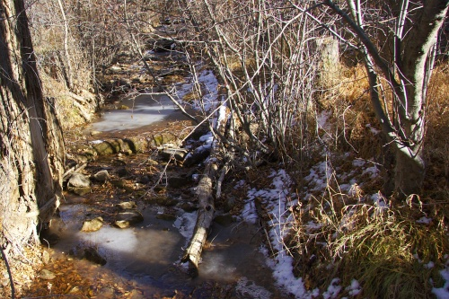Icy Creek near Taos
